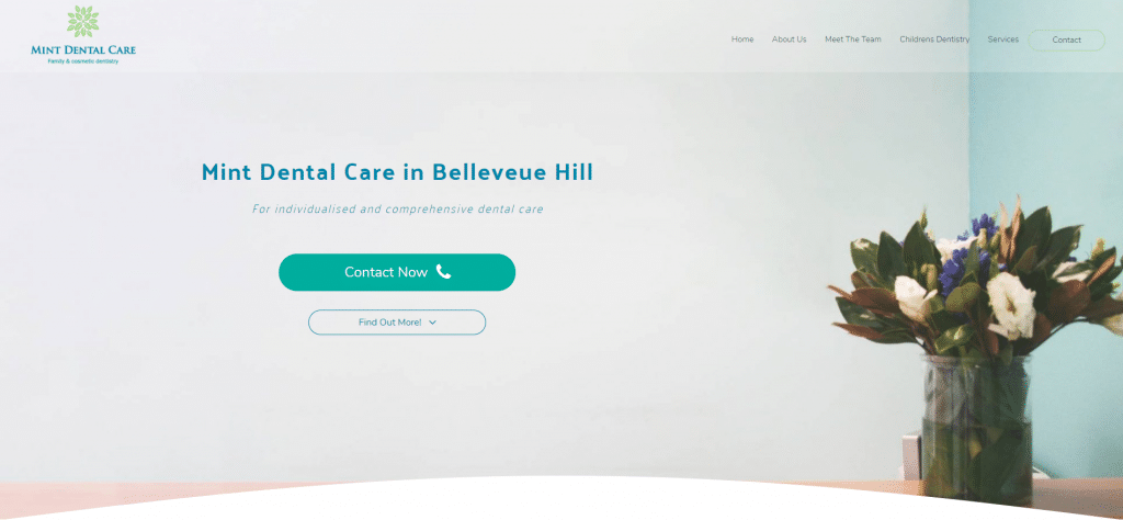 mint dental care screen